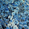 blue-leaves-2009-oil-on-canvas-105x45in-jessica-siemens-a-painting-of-a-small-silver-and-blue-leafy-plant.jpg