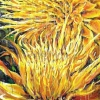 giant-yellow-flowers-2009-oil-on-canvas-50x108in-jessica-siemens-two-dripping-yellow-flowers.jpg