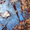 winter-reflections-oil-on-canvas-30x40in-jessica-siemens-2013small