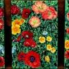 poppies-triptych-oil-on-canvas-1x1-5ft-each-jessica-siemens-2011sm.jpg