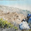 anza-borrego-landscape-watercolor jessica siemens.jpg