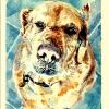 prana-watercolor-4x6in-jessica-siemens-2010small.jpg
