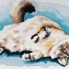 snowball-watercolor-on-paper-jessica-siemens-2012