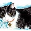 squeekers-watercolor-4x6in-jessica-siemens-2010small.jpg